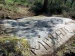 Petroglifos da Carrasca, en San Xulián(Marín).