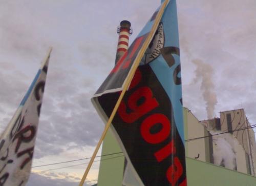 Marcha contra Celulosas, este sábado 11 de xuño con saída ás 19:30 horas dende as alamedas de Marín e Pontevedra.