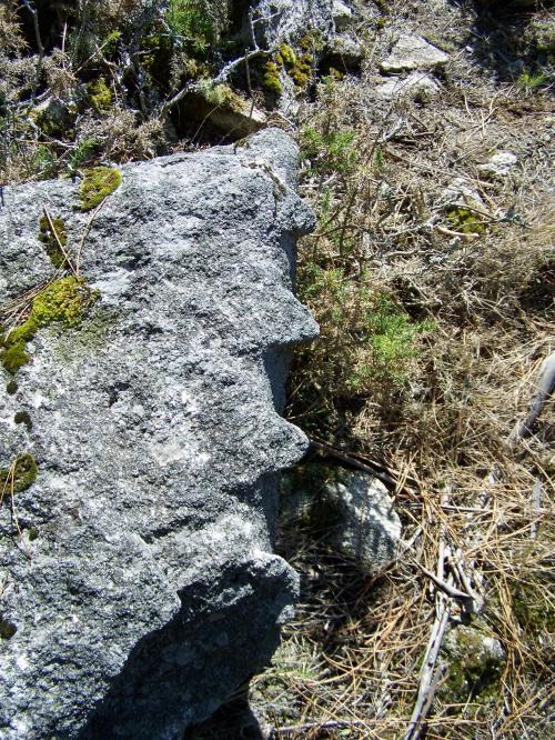 """Os """"dentes"""" que deixaron marcadas na pedra as cuñas cravadas nunha pedra que foi traballada polos canteiros de antano."""