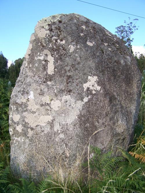 Menhir de Currás, imaxe tomada en xuño de 2011.