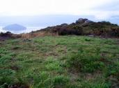 O miradoiro natural do Alto do Pornedo, coa illa de Tambo ao fondo no medio da ría.