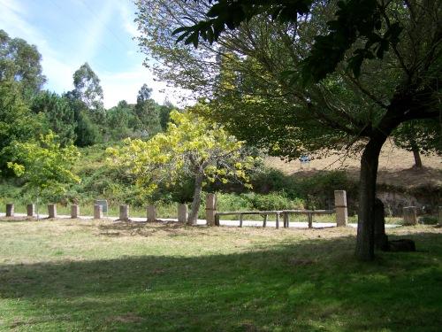 O novo look da área arborada a carón do Monte Pituco e da estrada de Figueirido.