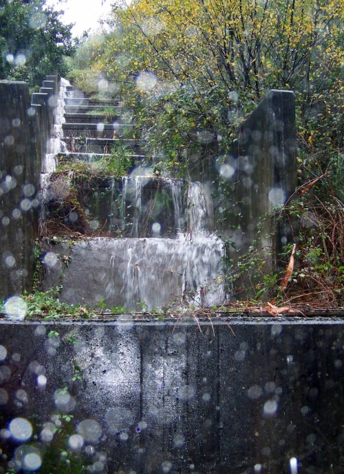 A auga que baixa dende o Monte Pituco cara ás veigas.