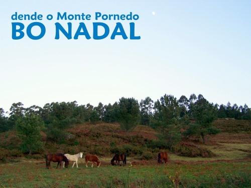 Dende o Monte Pituco, BO NADAL.