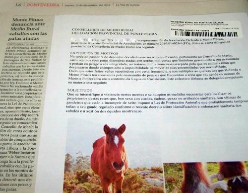 La Voz, sobre o escrito presentado na Delegación da Xunta sobre os cabalos coas patas atadas.