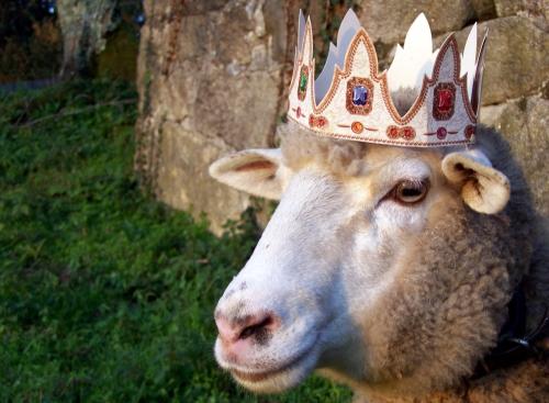Xa chegaron os Reis ao Monte Pituco.