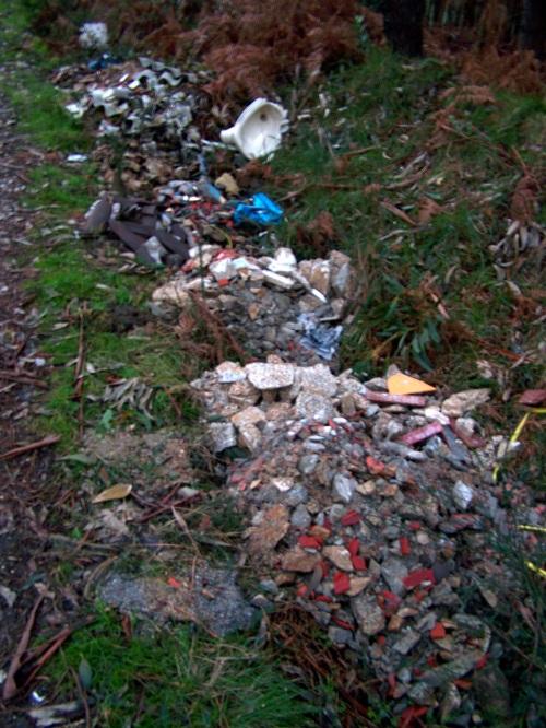 Escombros atopados na pista forestal do Pituco en xaneiro de 2013.