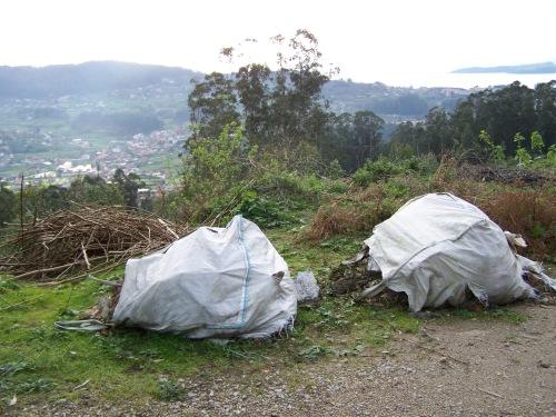 Verquido ILEGAL atopado no Monte Pituco este mes de febreiro.