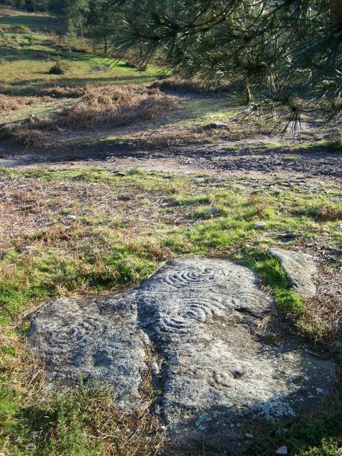 Gravados rupestres CATALOGADOS do Pornedo, en estado de abandono.