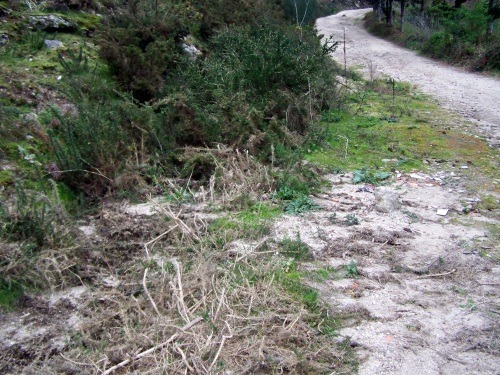 As canalizacións para a auga, atascadas por falta de mantemento da pista.
