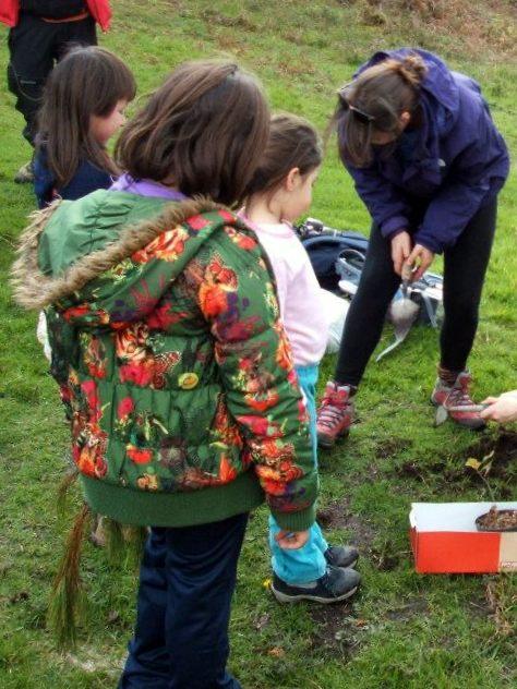 Educando no respecto á natureza (foto, Almuinha).