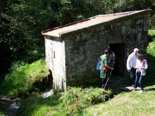 Visita ao Monte de Salcedo organizada pola Comunidade de Montes.