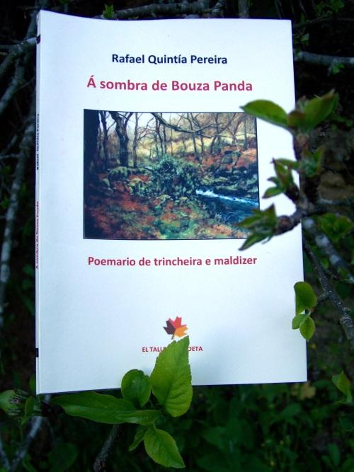 """""""Á sombra de Bouza Panda"""": Rafael Quintía."""