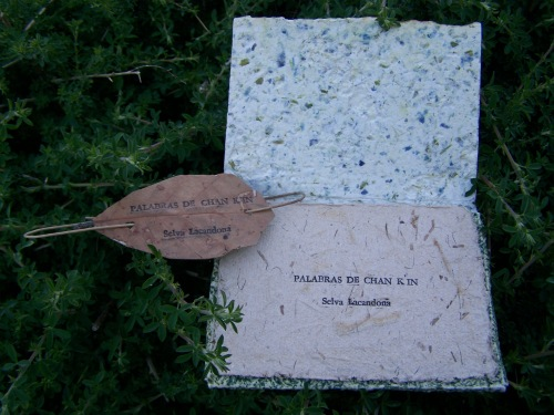 """Palabras de Chan Kun"", Selva Lacandona."