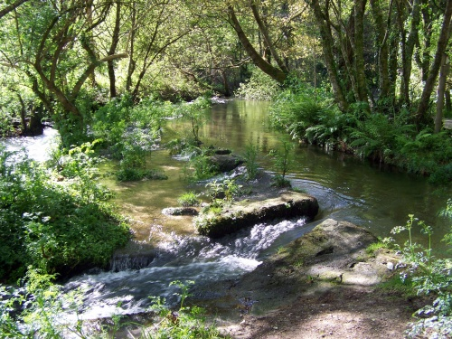 Treito do río Gafos.