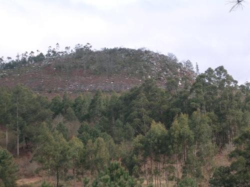 Monte Agudelo, Moaña.