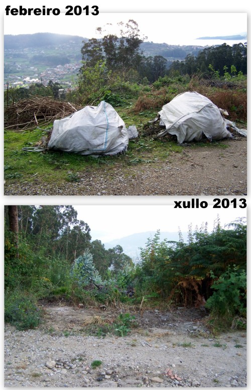 Pasaron 5 meses dende que apareceron os sacos cos restos de obra ata que por fin foron retirados.
