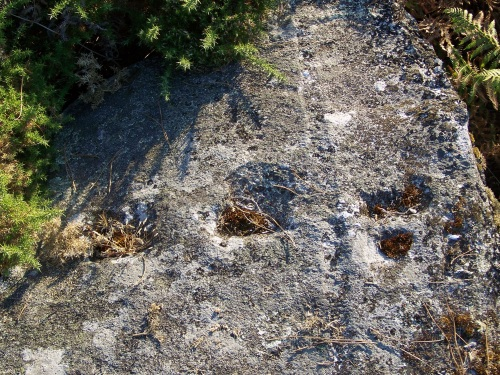 Marcas de cantería nas pedras cercanas ao petroglifo de Pinal de Caeiro.