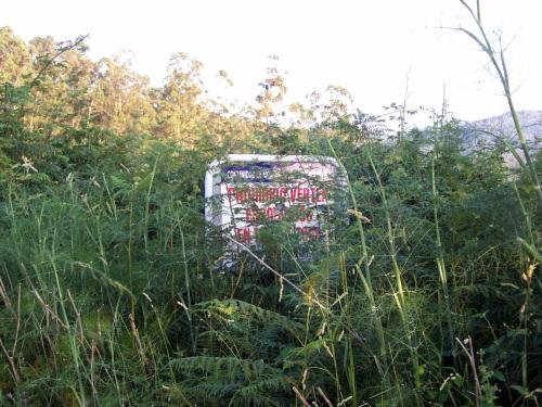 Cartaz prohibindo verquer lixo, cuberto de vexetación (xullo de 2013).