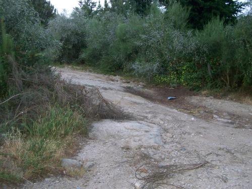 Estado da pista forestal do Monte Pituco en xullo de 2013.