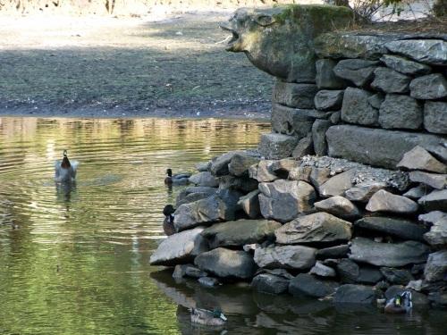 Nivel mínimo de auga na lagoa.