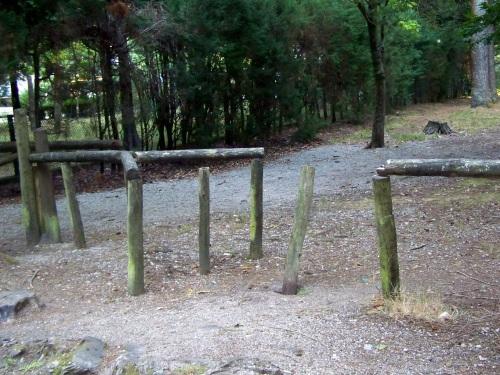 Os valados de madeira, en mal estado.