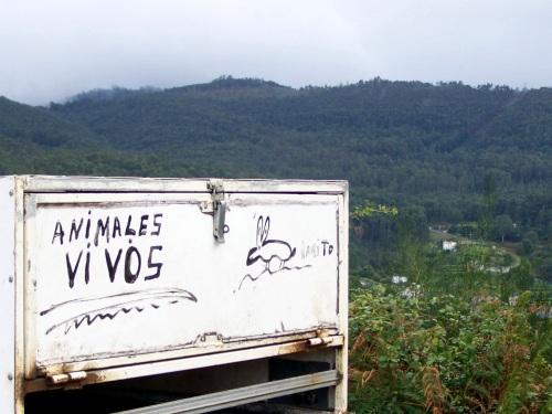 Comezou a tempada de caza. Volveron ao monte os vehículos con remolques para cans.