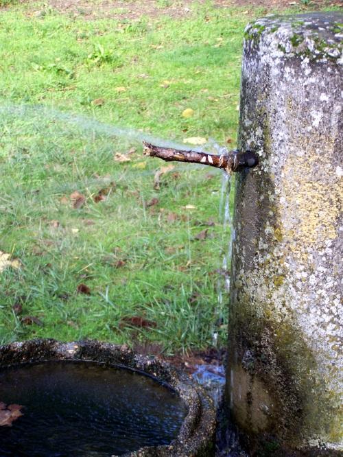 Outra das fontes da arboreda, cunha fuga de auga.