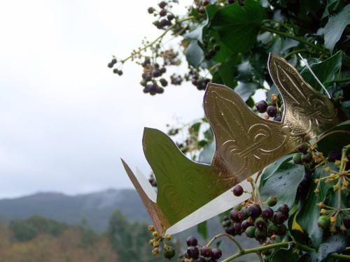 Día de Reis no Monte Pituco.