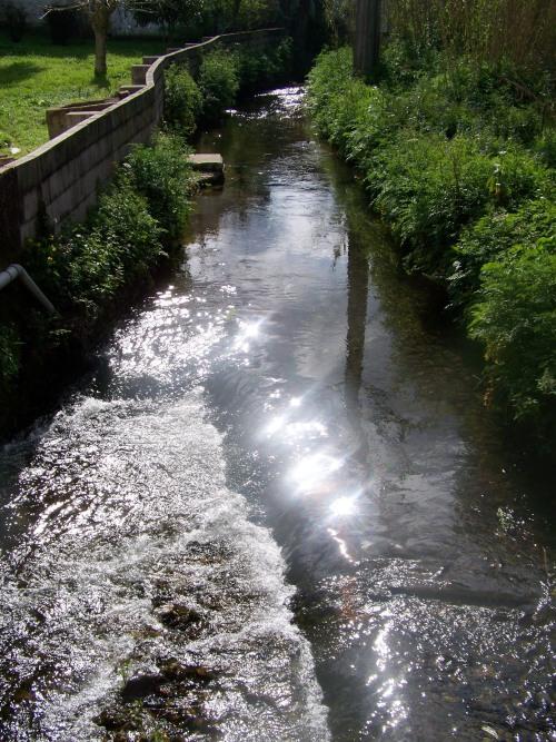 Andaina bordeando o río Lameira.