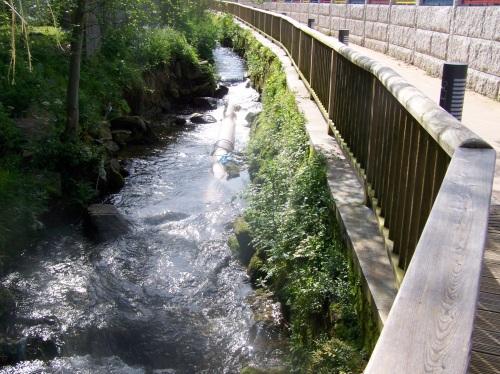 Senda fluvial do Lameira na zona do Sequelo.