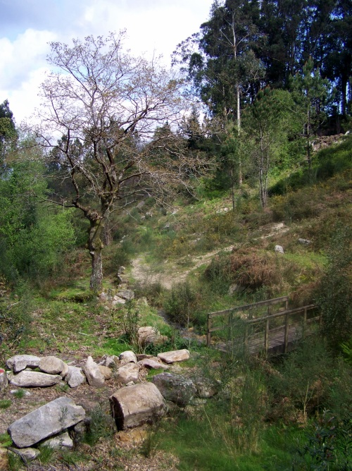 Andaina a Castiñeiras seguindo a senda do Lameira.