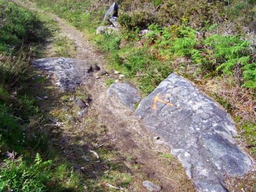 Marca de sprai nunha rocha gravada por Pepito Meijón.