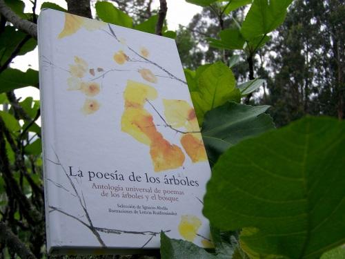 """""""La poesía de los árboles""""."""
