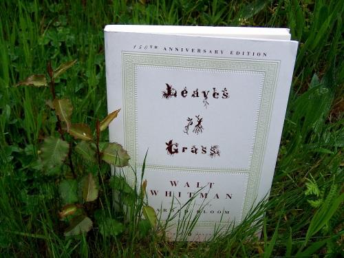 """""""Leaves of grass"""", de Walt Whitman."""