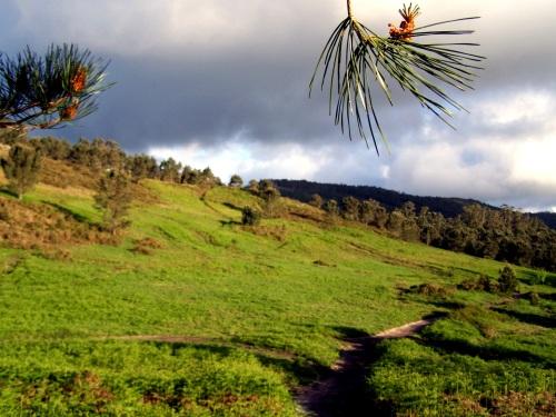 Día da Terra no Monte Pituco.