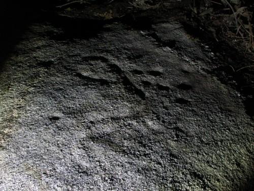 Conxunto rupestre da Carrasca (foto, Paulo Troitiño Iglesias).