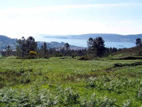 Vista da ría dende o val do Monte Pituco.