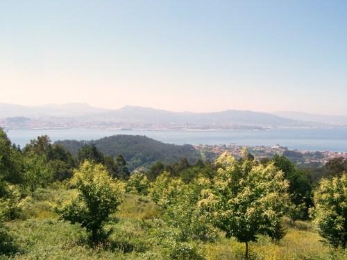 Vista da ría de Vigo dende o miradoiro de Outeiro do Cruceiro.