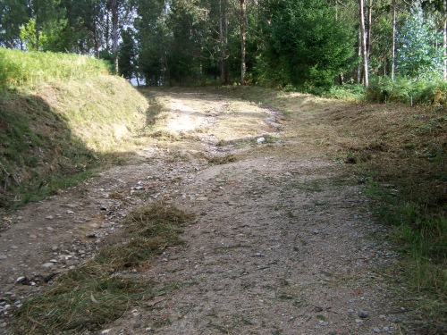 Desbroce da pista forestal do Pituco.