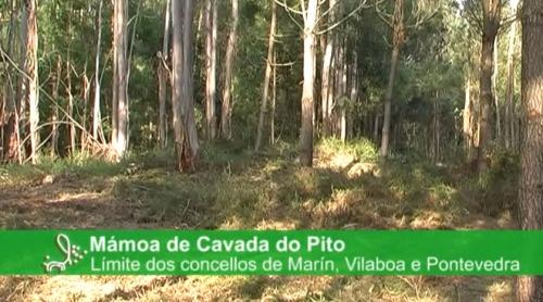 Mámoa de Cavada do Pito.
