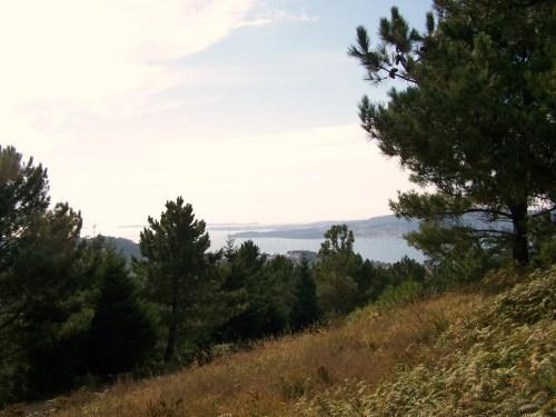 Vista da ría dende o Monte Pituco.