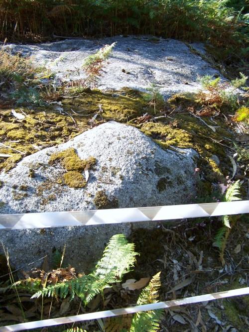 Petroglifos do Escorregadoiro, en Lourizán.