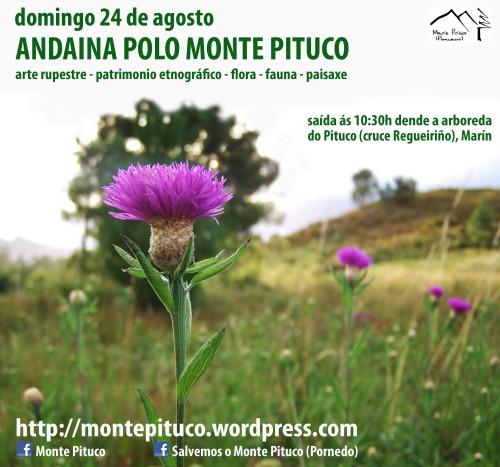 Andaina polo Pituco, 24 de agosto ás 10:30h.