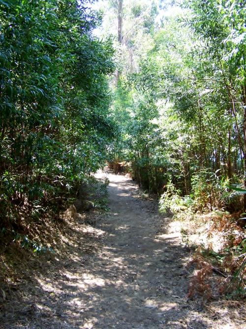 Sendeiro perimetral de Tambo.
