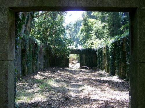 Ruínas do antigo lazareto de Tambo.