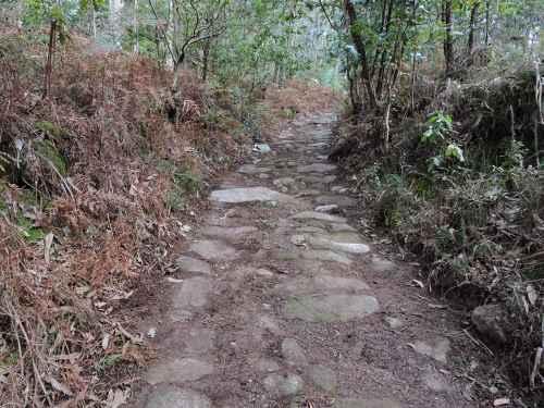 Antigo camiño de carro en dirección á Carrasca.