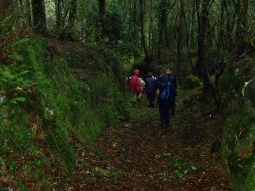 Ruta polos montes de Cela e Ardán.