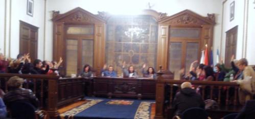 Aprobación por maioría do apoio á Fundación do Lago de Castiñeiras.