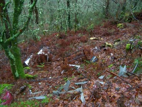 Lixo tirado no monte.
